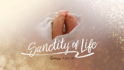 sanctity_of_life-PSD