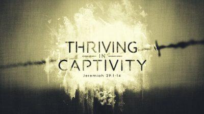 thrivingincaptivity